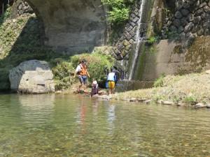 洞泉寺橋下で魚取り